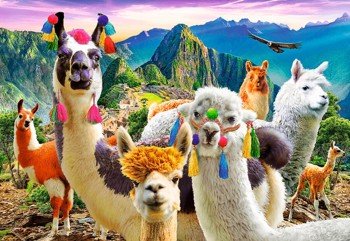 Lamas in the Mountains