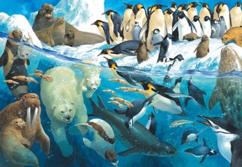 Animals of the Polar Region